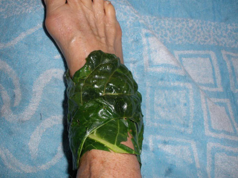 Cataplasma cu varza si tarate - dureri, umflaturi, puroi, blocaje limfatice | LaTAIFAS